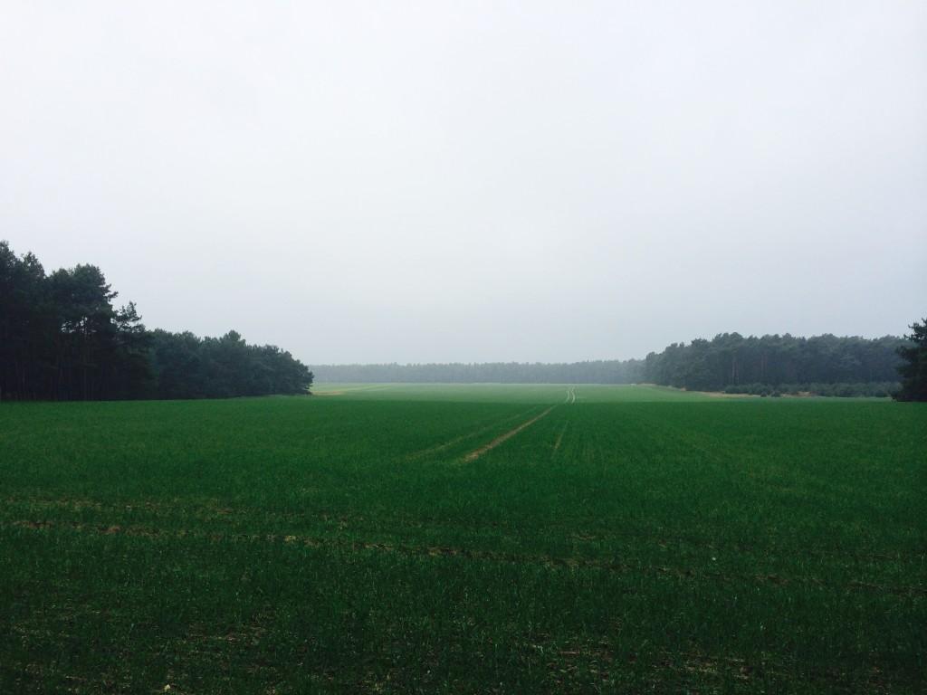 Transbrandenburg - Last day